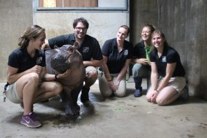 Fiona S First Birthday Party The Cincinnati Zoo